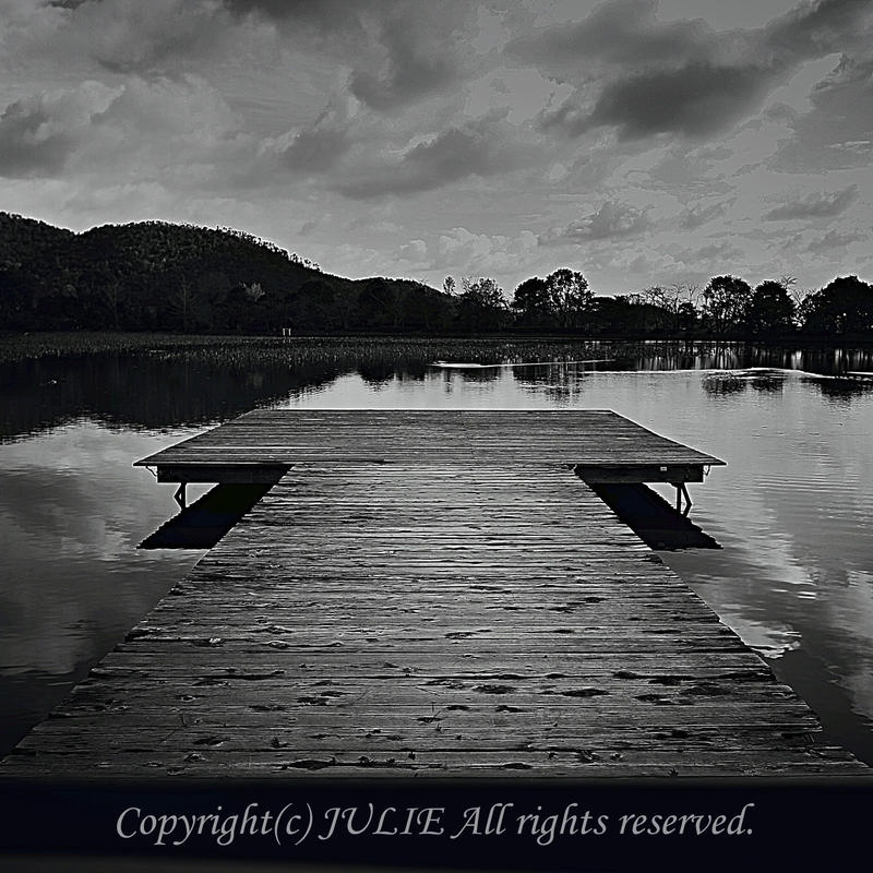 JULIE's Photo Monochrome-206