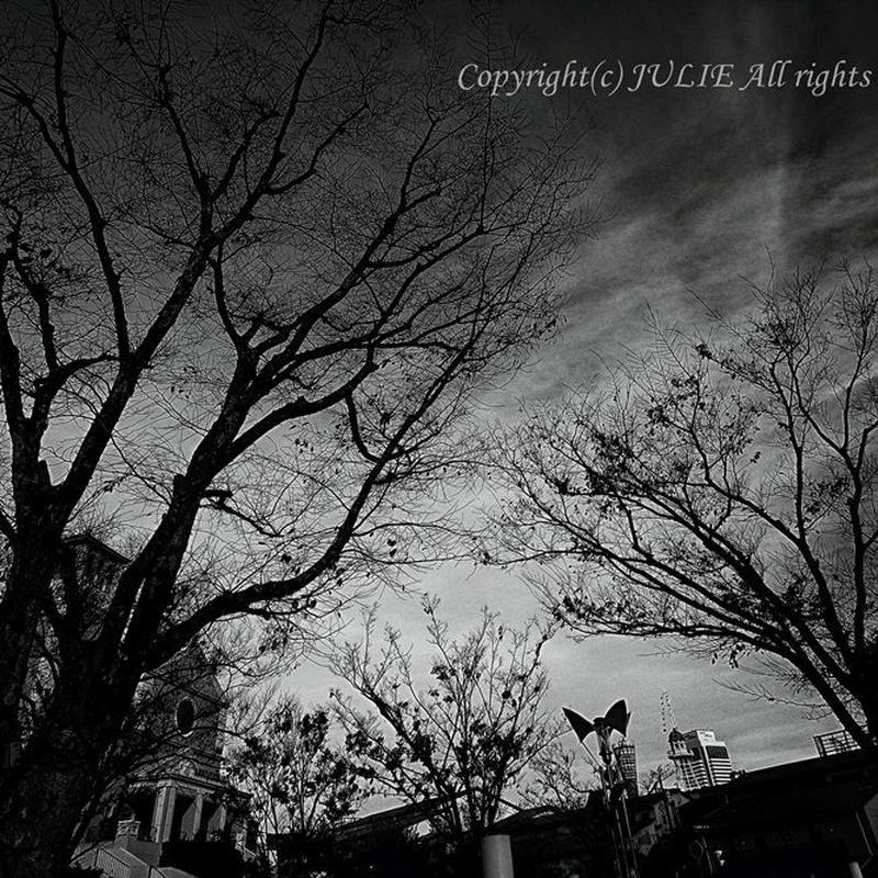 JULIE's Photo Monochrome-209