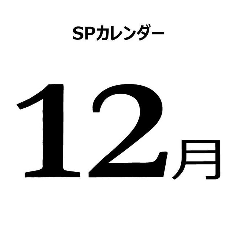 販促カレンダー:2019年12月(PDF版)