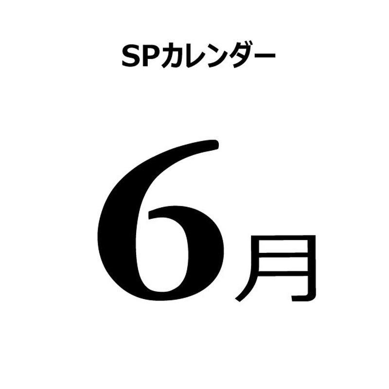 販促カレンダー:2019年6月(PDF版) .