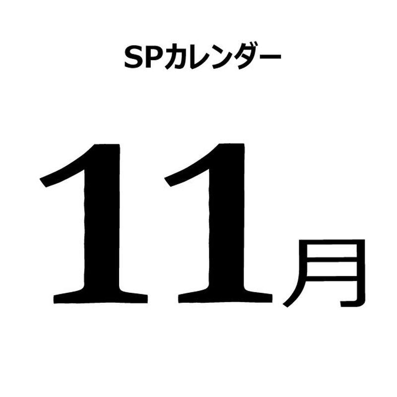 販促カレンダー:2019年11月(PDF版)