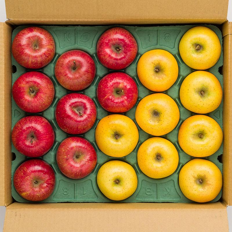 サンふじ・シナノゴールドのりんごセット 5kg