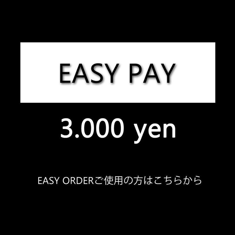 EASY ORDER 3000