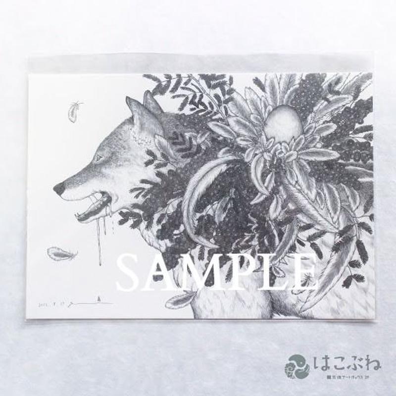 命 B5ポストカード / yuni