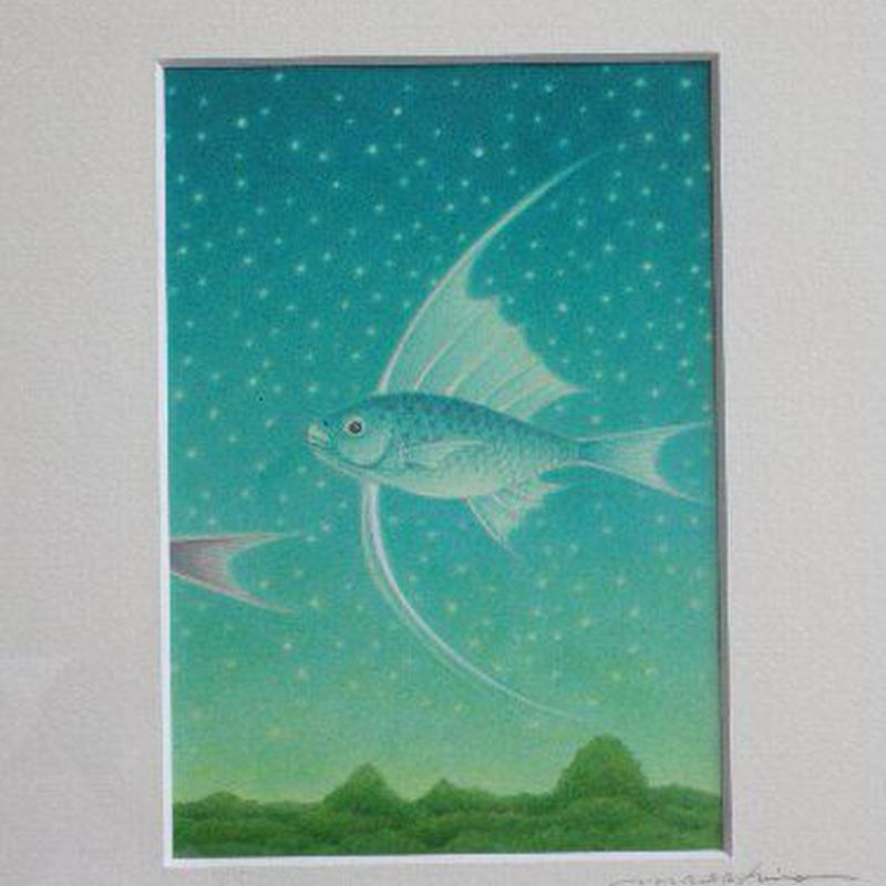小川真弘  アクリル画 「宙魚 星空を泳ぐ」
