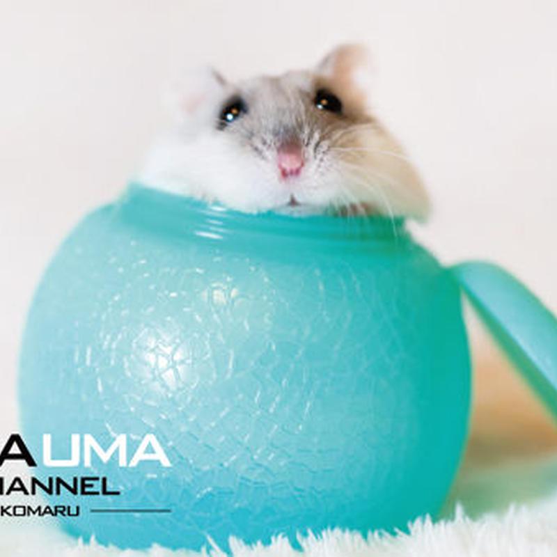 UMAUMAチャンネル ポストカード3点セット 東急ハンズ池袋店販売記念品