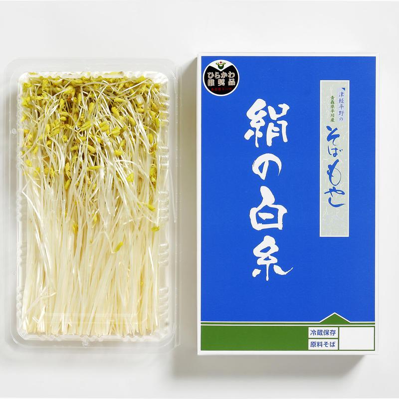 津軽平野のそばもやし「絹の白糸」300g×3パック