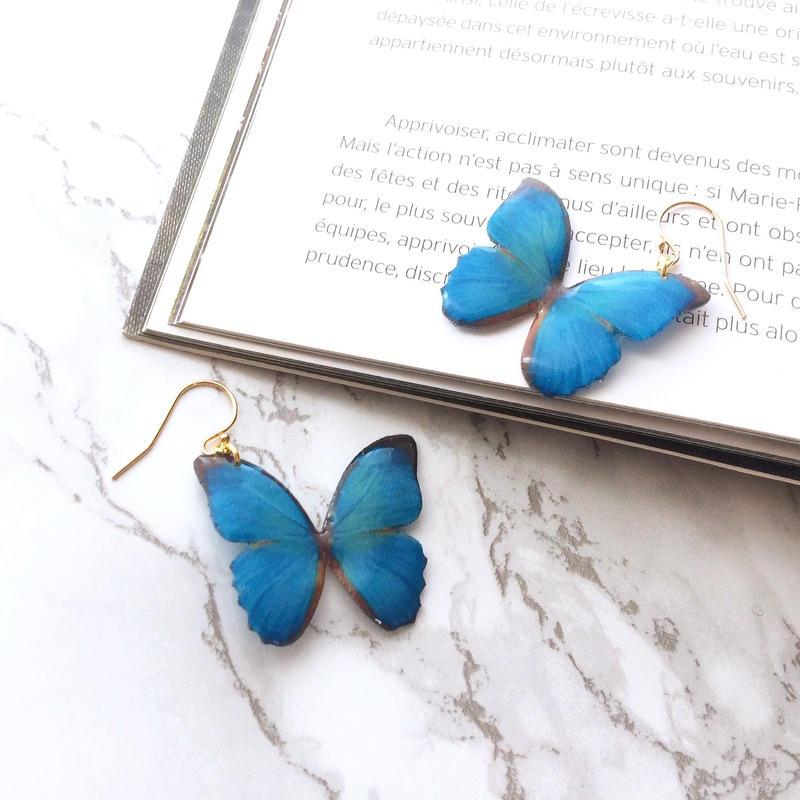 エメラルドブルーの蝶々 ピアス / イヤリング