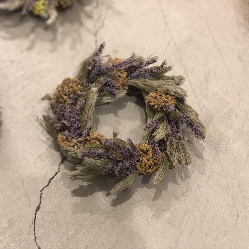 tiny wreathe :  bush