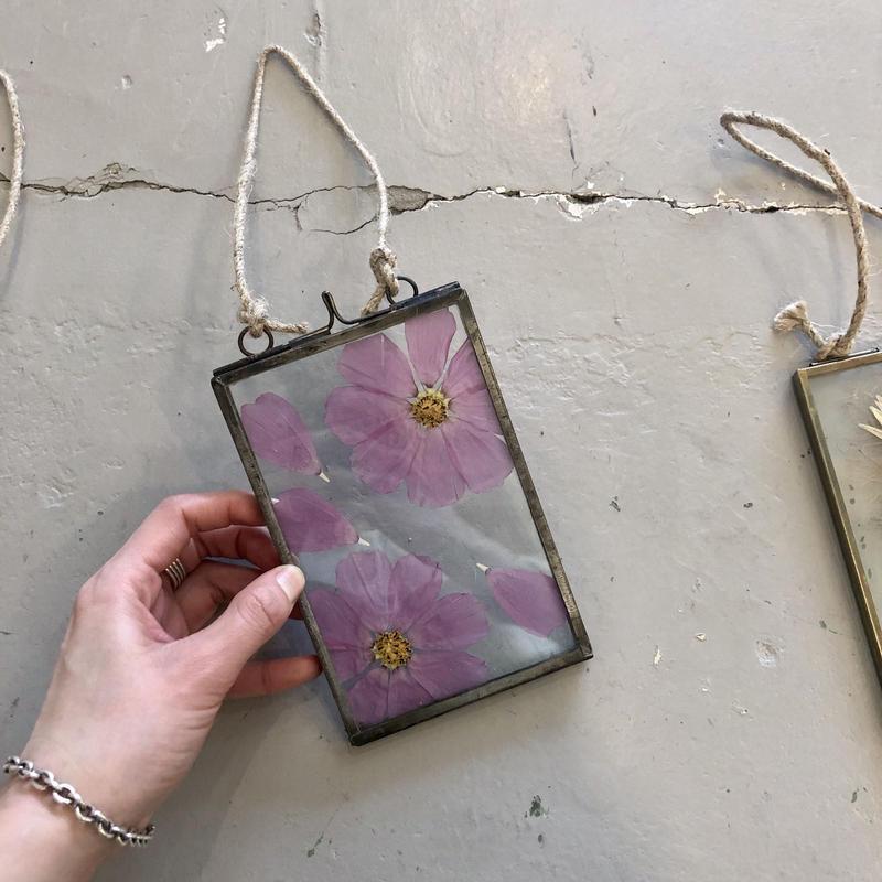 flower Photo flame=吊型 M marguerite=