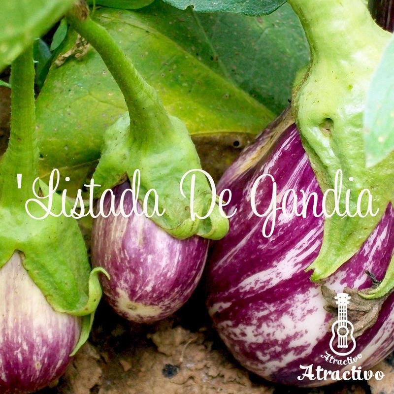 美しいシマ模様と甘くてとろける美味しさのナス/リスターダ・デ・ガンディアの種