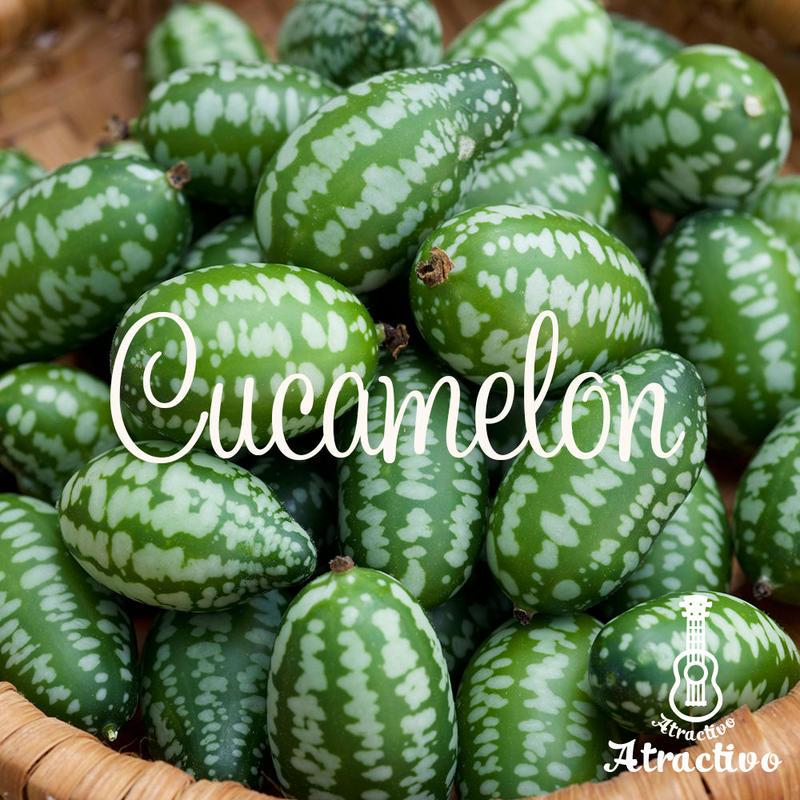 欧米で人気のふしぎなフルーツ/きゅうりメロンの種