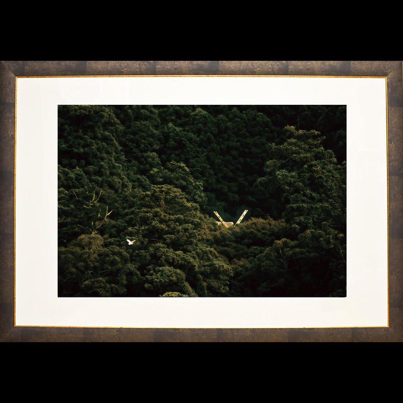 森という名の神(Sサイズ)
