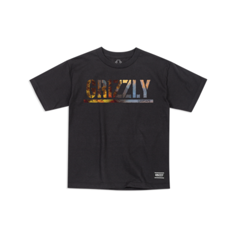 "Grizzly / ""Stamped Scenic Youth T-Shirt"" Black / M, XL"