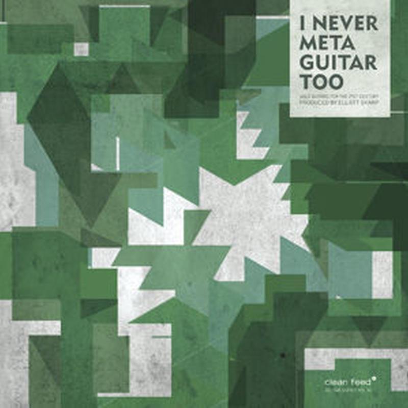 I NEVER META GUITAR TOO(solo guitars for the XXI Century)