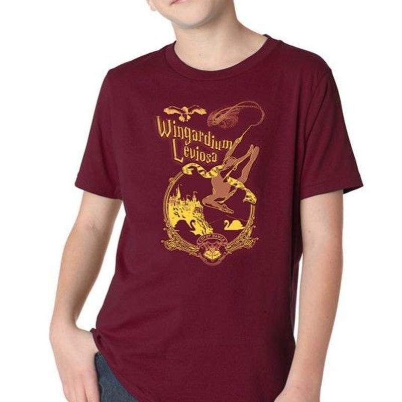 ハリーポッターのパロディ⁈SWAN LAKE  Tシャツ
