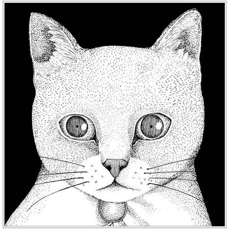 テンテンコ / ALL YOU NEED IS CAT ~猫こそはすべて [CD]