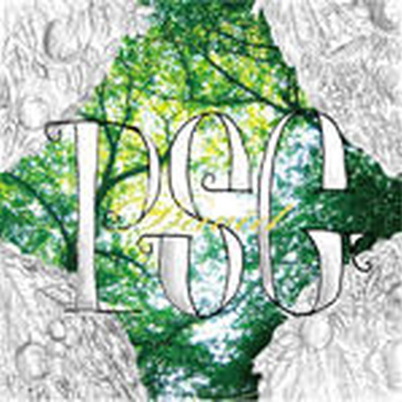 PSG (PUNPEE+S.L.A.C.K.+GAPPER) / DAVID [CD]