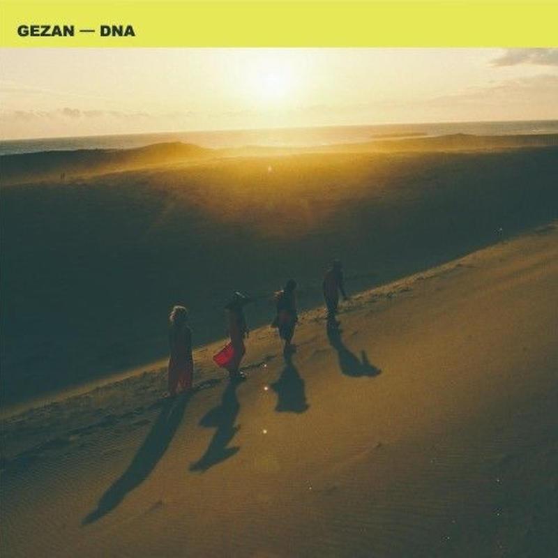 RSD2019 - GEZAN/マヒトゥ・ザ・ピーポー - DNA/DNA (IN HER SPRING VERSION) [7inch]