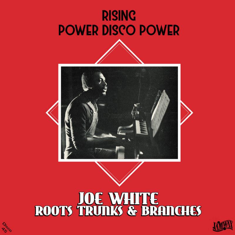 Joe White / Rising Power Disco Power [12INCH]