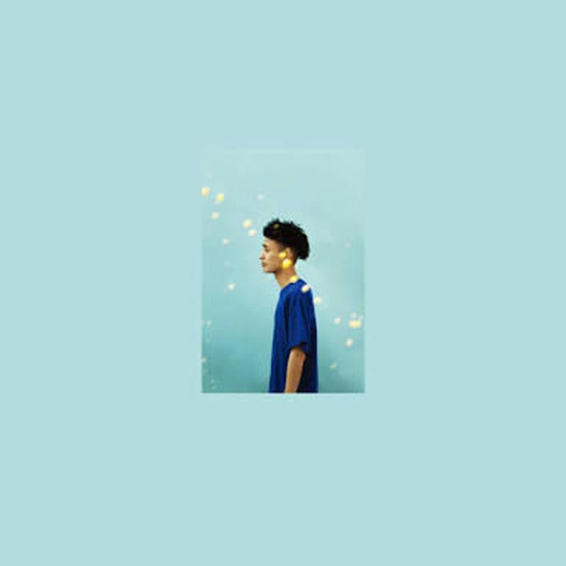 KID FRESINO / Salve [CD]
