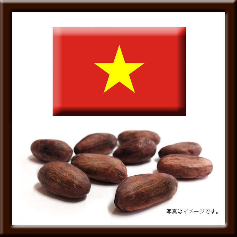 310162 / ベトナム産カカオ豆 / 1.5㎏