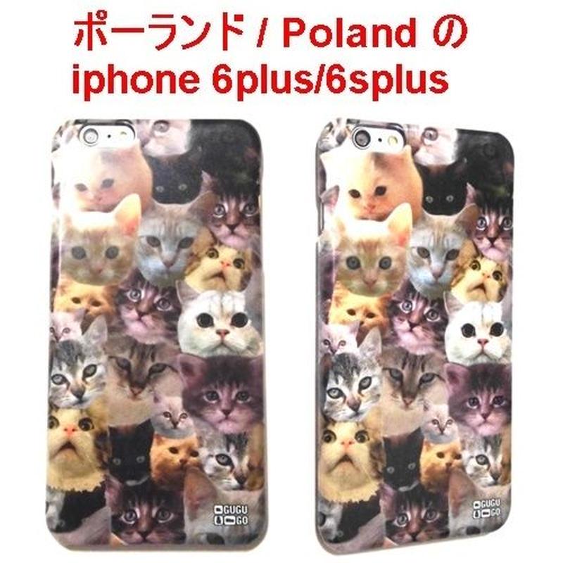 MrGUGU&MissGO ミスターググアンドミスゴー ポーランド 猫 Catz phone case iphone 6plus / 6splus アイフォン シックス プラス ケース ねこ 海外