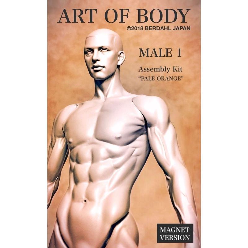 ART OF BODY MALE1(組立キット)色:ペールオレンジ[マグネット版]※Japan only