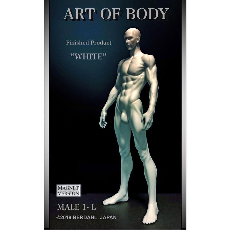 ART OF BODY MALE1-L(完成品)色:ホワイト [マグネット版]※Japan only