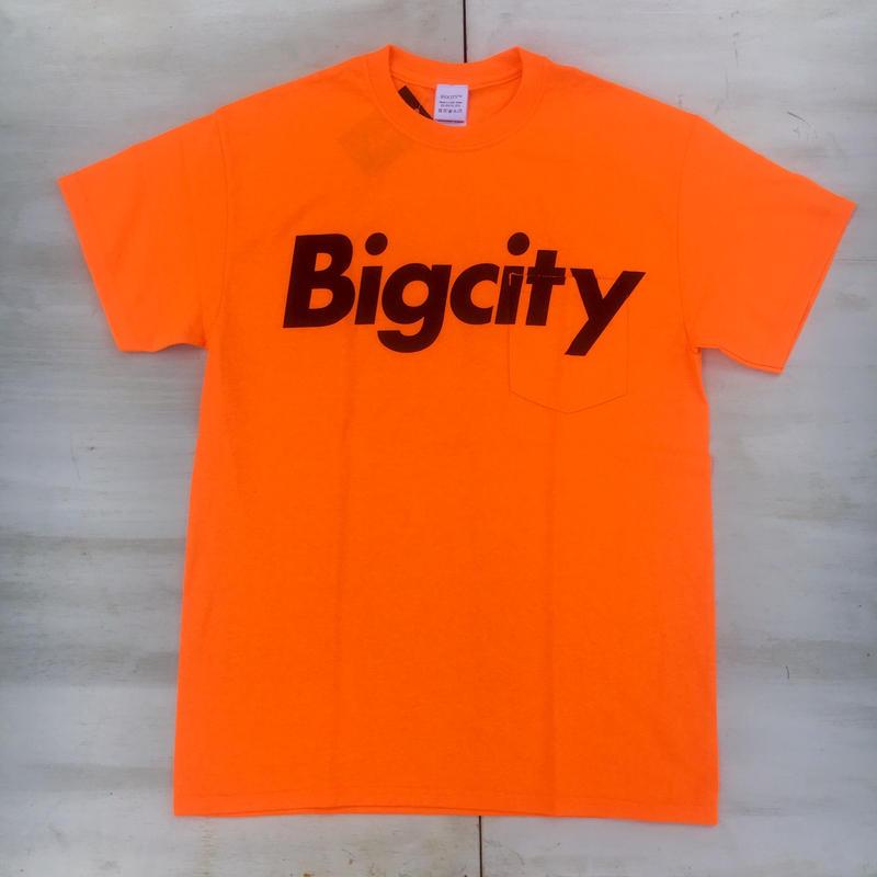 Bigcity LOGOS/STEE ネオンカラー