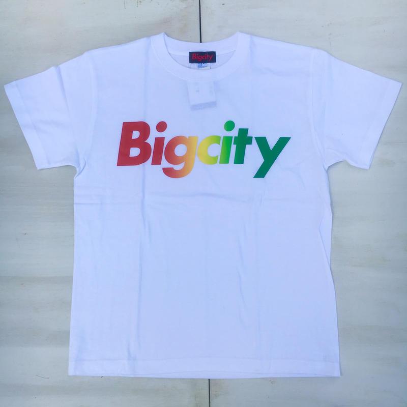 Bigcity LOGOS/STEE バイブスあがあげカラー