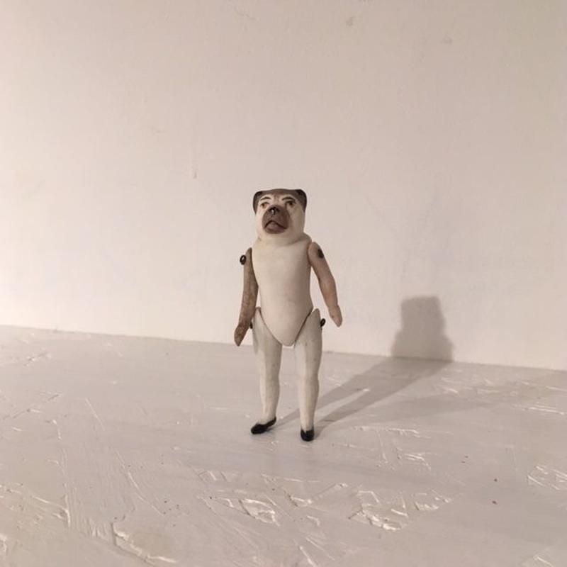 犬のミニョネット