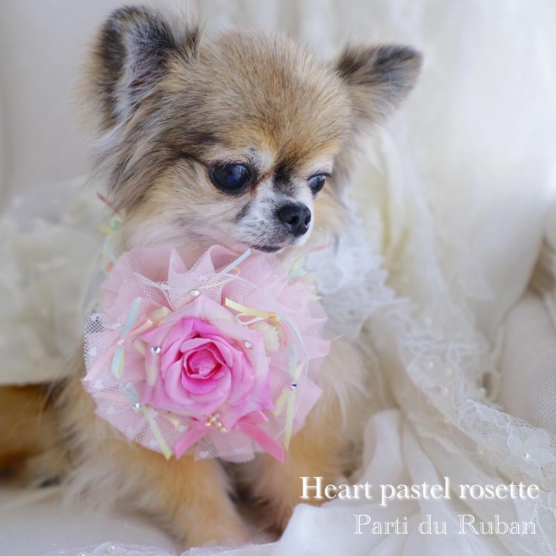 Heart  pastel rosette