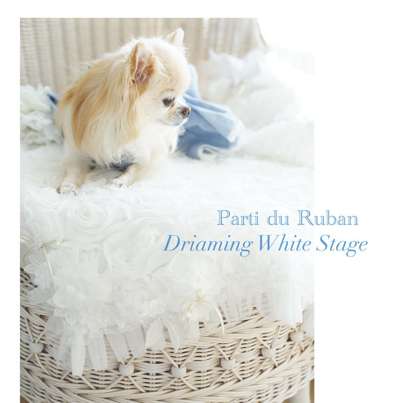 Dreaming White Stage