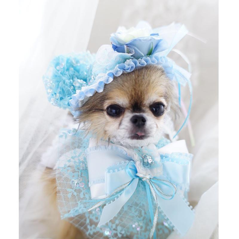 Love  parade hat blue