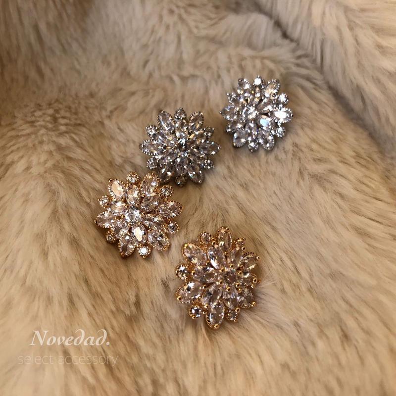 Polaris pierce/earring