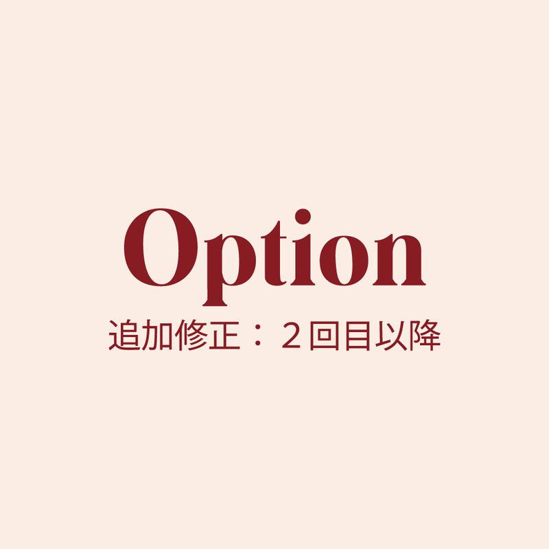 Option データ追加修正【2回目以降】