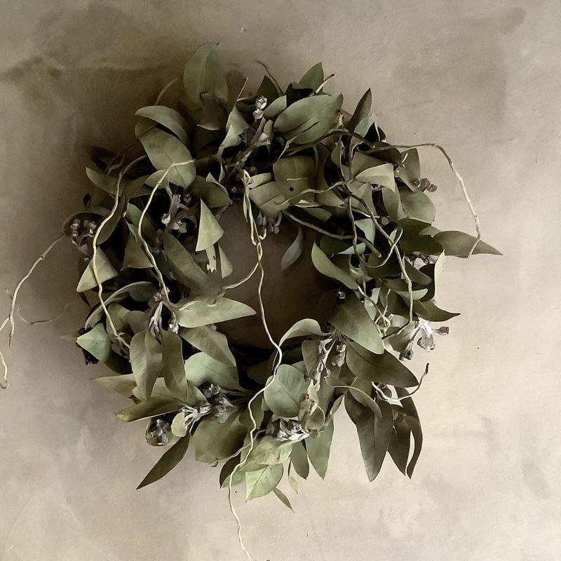 Eucalyptus tetragona Wreath(ユーカリ・テトラゴナのリース)