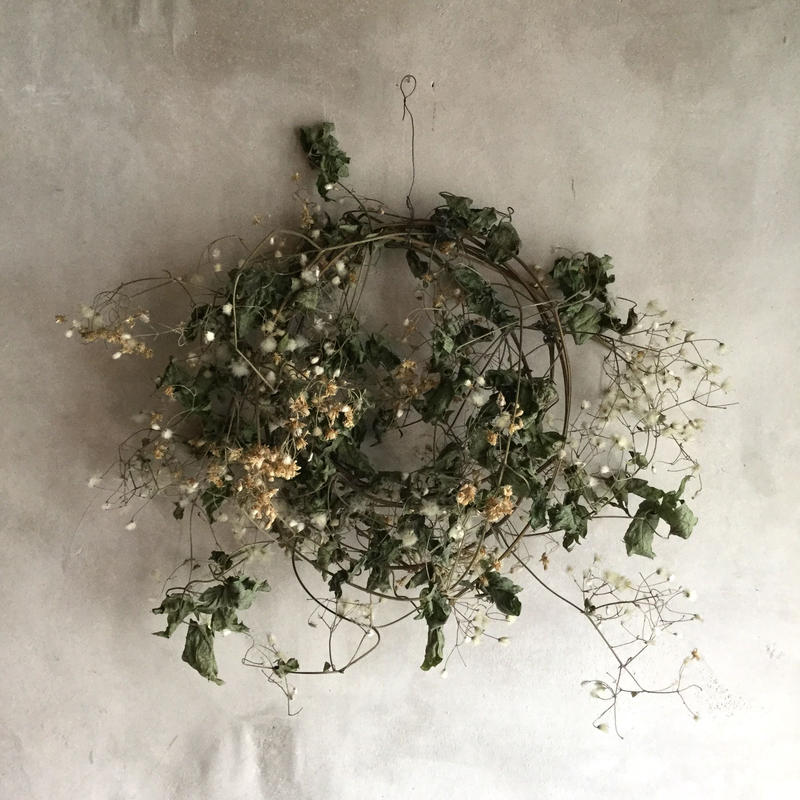 Dried Botanzuru Wreath (牡丹蔓のドライリース)