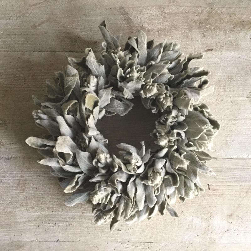 Silver Lamb's Ear Wreath( ラムズイヤーのシルバーリース)