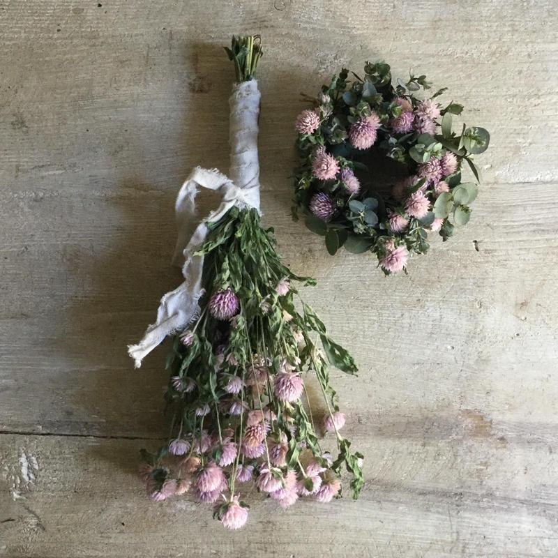 Dried Sen-Nichi-Ko Mini Wreath & Swag(千日紅のミニリース&スワッグ)