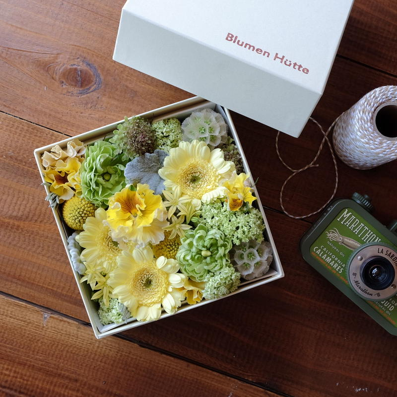 Flower Box  HAZY TAUPE(ヘイジートープ)M size