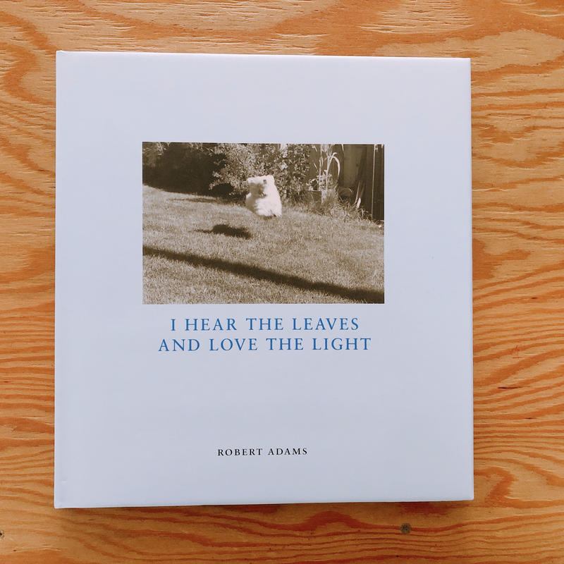 ROBERT ADAMS   HEAR THE LEAVES AND LOVE THE LIGHT