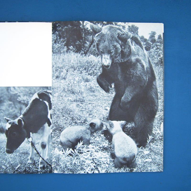 動物の世界 ANIMALS Big & Little / Ylla (イーラ)