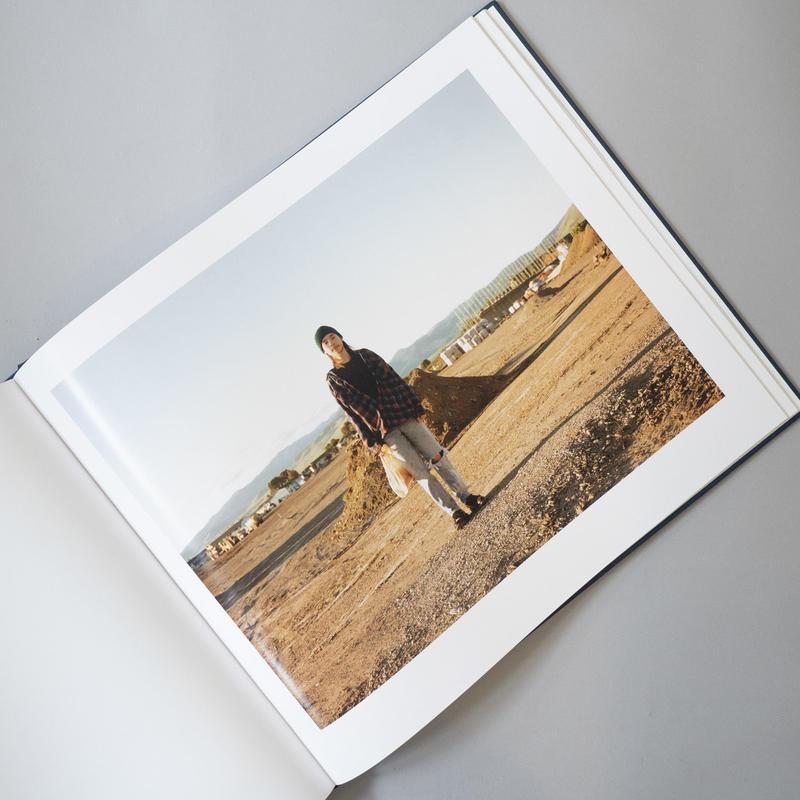 Stranger Passing / Joel Sternfeld(ジョエル・スタンフェルド)