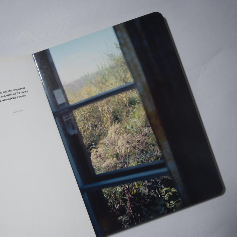 A Song for Windows / ホンマタカシ (Takashi Homma)