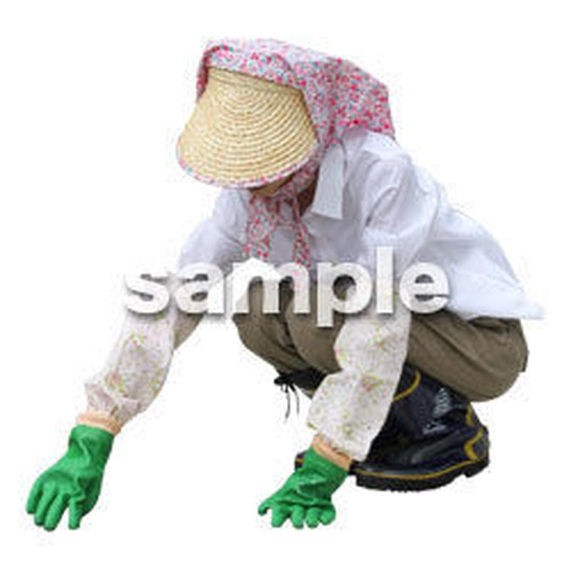 農作業 女性 NO_13