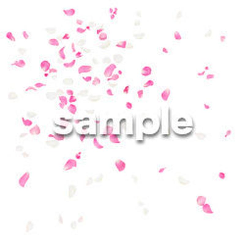 Cutout People パーティー バラの花びら DD_Flower