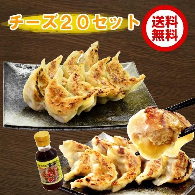 宝永ギフトチーズ20セット 【送料込】