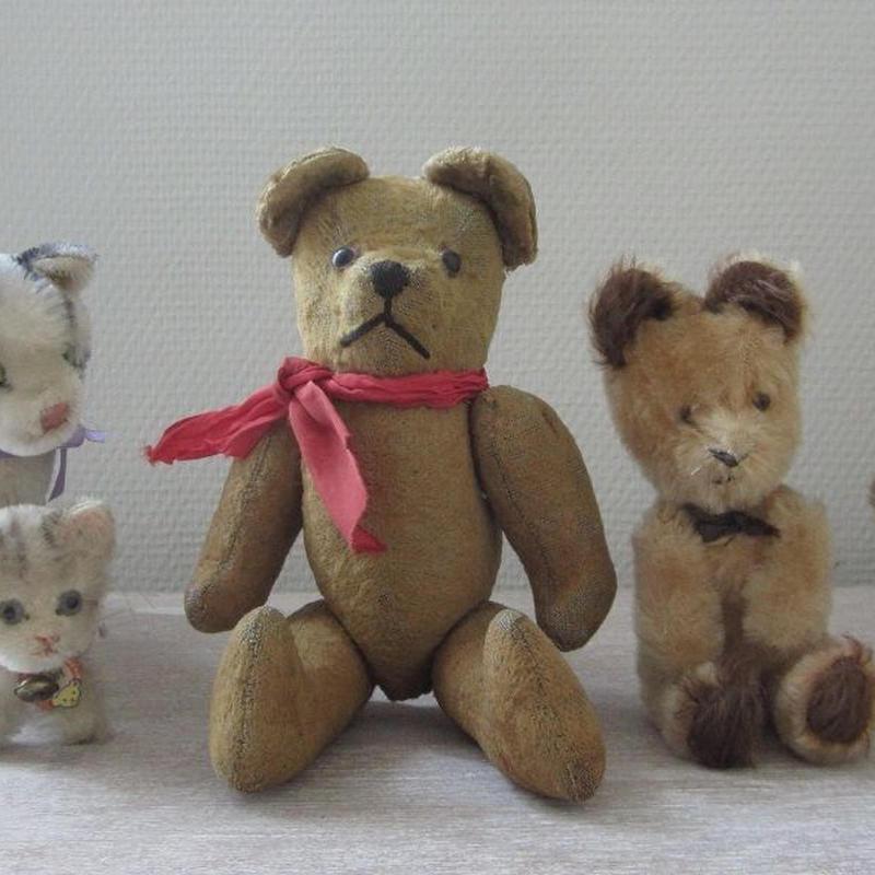 赤いリボンの熊ちゃん